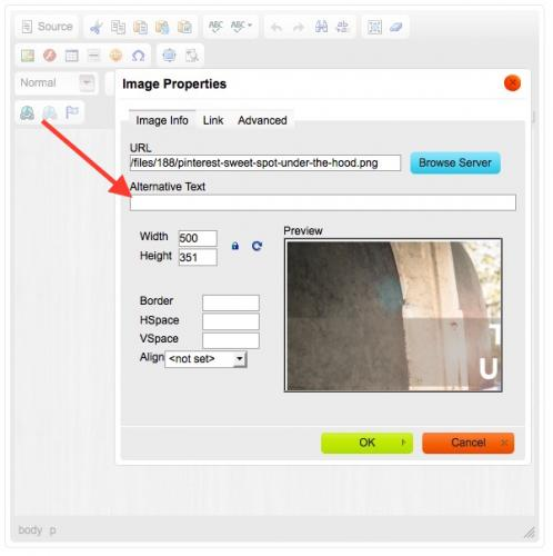 Where You Will Find the Alt Attribute Field In Your Website When You Are Uploading An Image: In the Image Properties Area