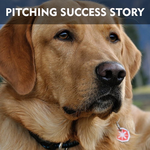 How Veterinary Emergency and Referral Group Pitched Fortune Magazine