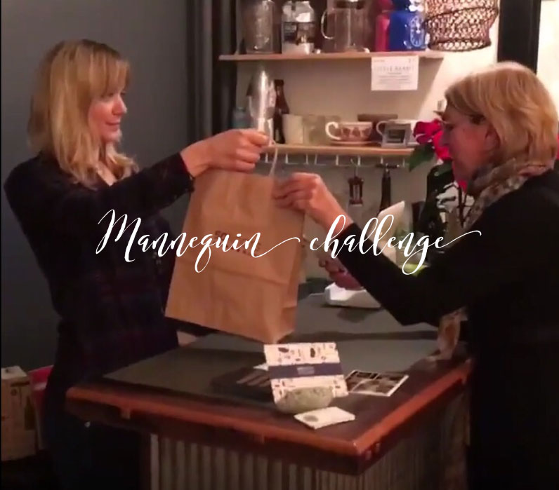 Mannequin Challenge - Do It!