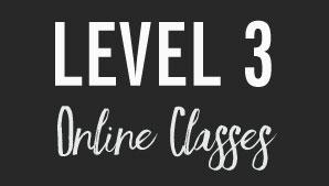 Tin Shingle's Membership Level 3: Online Training Classes - TuneUps