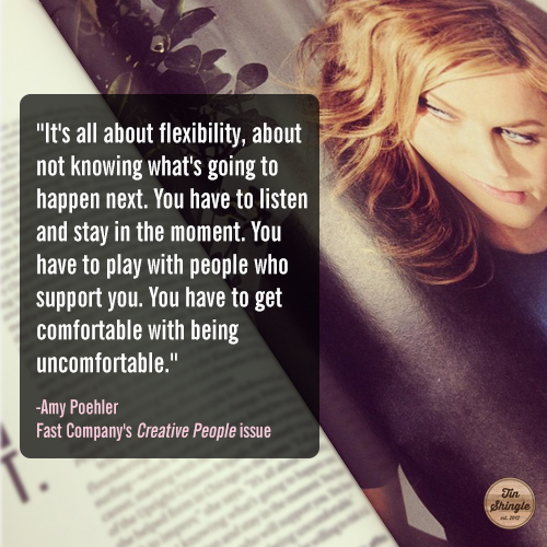 It's all about flexibility - Amy Poehler Fast Company